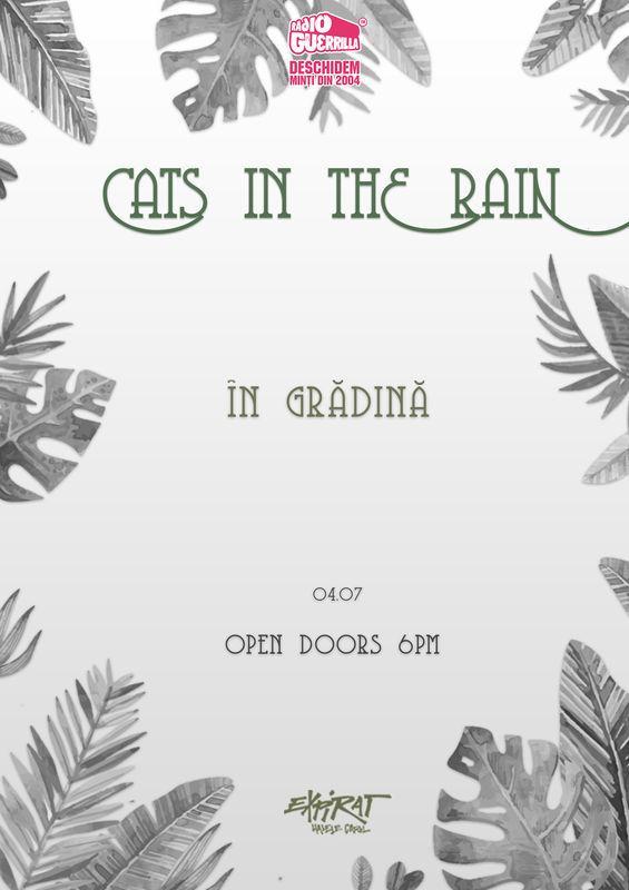 4 Iulie, Bucuresti, Cats In The Rain in gradina la Expirat